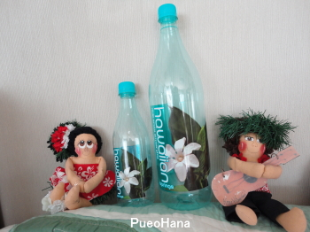 8hawaiiann_water